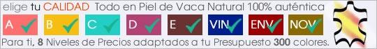 ICONO_CARTELA VERSIONES PRODUCTO