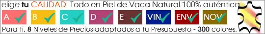 ICONO_CARTELA VERSIONES PRODUCTO_1