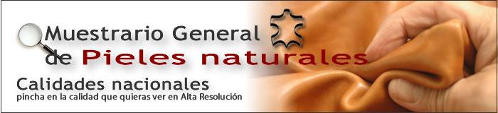 muestrario general de pieles y cueros para sofás